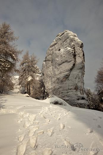 ČŠ zima_09-10_002