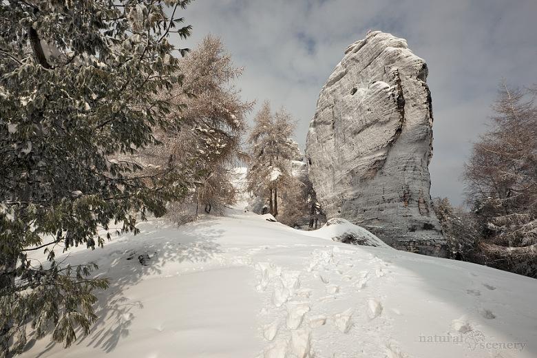 ČŠ zima_09-10_001