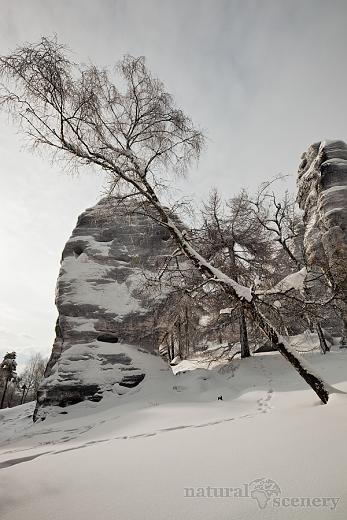 ČŠ zima_09-10_004