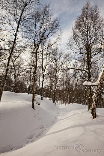 ČŠ zima_09-10_005