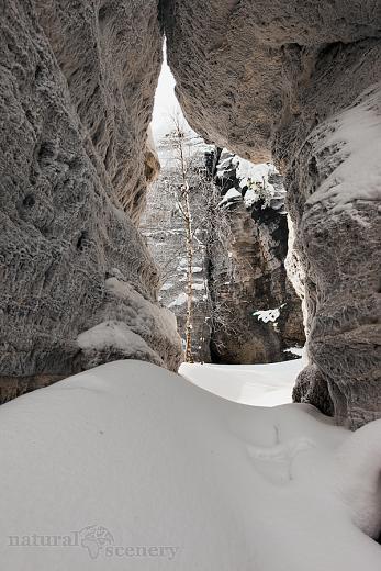 ČŠ zima_09-10_009