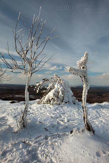 ČŠ zima_09-10_011