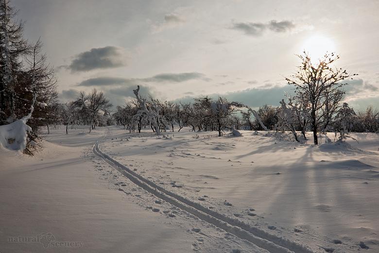 ČŠ zima_09-10_015