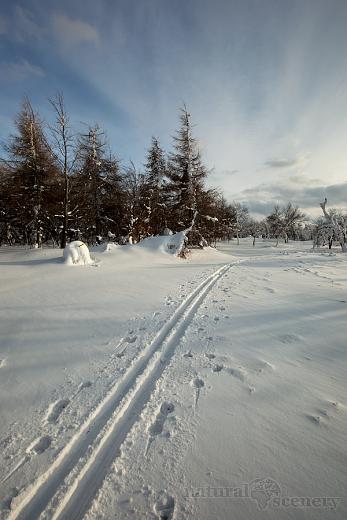 ČŠ zima_09-10_012