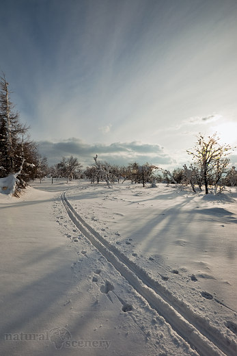 ČŠ zima_09-10_014