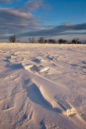 ČŠ zima_09-10_022